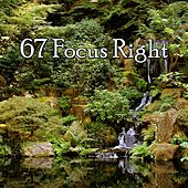 67 Focus Right von Massage Therapy Music