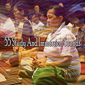 55 Study and Immersion Sounds by Classical Study Music (1)