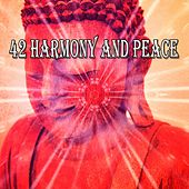 42 Harmony and Peace von Massage Therapy Music
