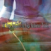 66 Yoga and Tai Chi Yoga Ambience Tracks von Massage Therapy Music