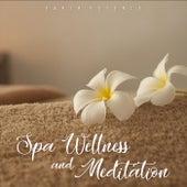 Spa Wellness and Meditation by Earth Essence