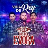 Vida de Rey by Los Del Evora