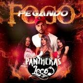 Pegando Fogo by As Pantheras