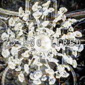 75 Hog Tired de Sounds Of Nature