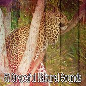 57 Graceful Natural Sounds by Relaxing Spa Music