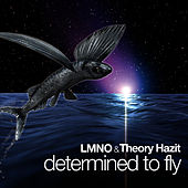 Determined To Fly by LMNO