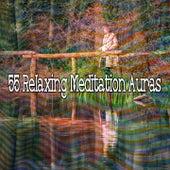 55 Relaxing Meditation Auras de Musica Relajante