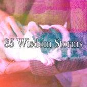 35 Wisdom Storms de Thunderstorm Sleep