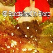 55 Specialised in Sleep de Smart Baby Lullaby