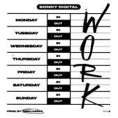 Work von Sonny Digital