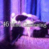 46 Mind Gardening von Rockabye Lullaby