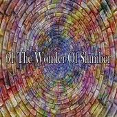 61 The Wonder of Slumber de Einstein Baby Lullaby Academy