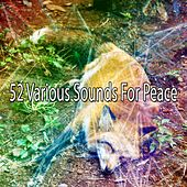 52 Various Sounds for Peace de Water Sound Natural White Noise