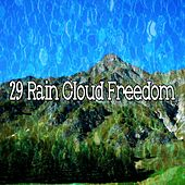 29 Rain Cloud Freedom de Thunderstorm Sleep