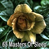65 Masters of Sleep de White Noise Babies