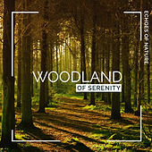 Woodland of Serenity by Echoes of Nature