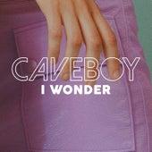 I Wonder von Caveboy