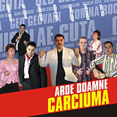 Arde Doamne Carciuma de Various Artists