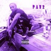 Purple Audio Vol. 2 by EME Byrrd
