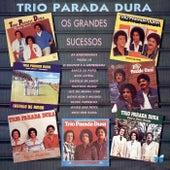 Os Grandes Sucessos de Trio Parada Dura