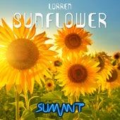 Sunflower by Lorren