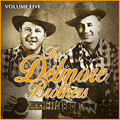 The Delmore Brothers Volume Five by The Delmore Brothers
