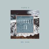 Llegaste Tú (Remix) de Papo V