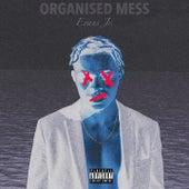 Organised Mess by Evans Junior