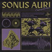 Stratford Ct. | Sonus Auri by Various Artists