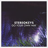 Go Your Own Way by Stereokeys