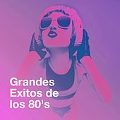 Grandes Exitos De Los 80's de Various Artists