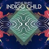 Indigo Child by Sinitus Tempo