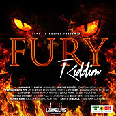 Lenkey & Bulpus Presents Fury Riddim de Various Artists