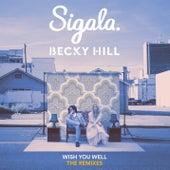 Wish You Well (Remixes) von Sigala