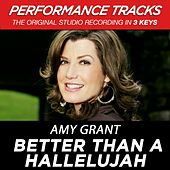 Better Than A Hallelujah (Performance Tracks) by Amy Grant
