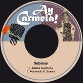 Solera Gaditana / Recuerdo a Linares de Sabicas