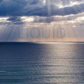 Liquid de Liquid