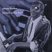 Spiders On The Keys (Live At The Maple Leaf Bar, New Orleans, LA / 1977-1982) by James Booker