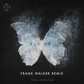 Not Ok (Frank Walker Remix) von Kygo