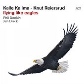 Flying Like Eagles by Kalle Kalima