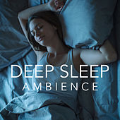 Deep Sleep Ambience by Various Artists