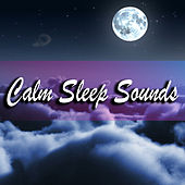 Calm Sleep Sounds by Various Artists