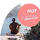 Hot Summer Afternoon de Nature Sounds Artists