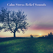 Calm Stress Relief Sounds by Nature Sounds (1)