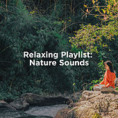 Relaxing Playlist: Nature Sounds by Nature Sounds (1)