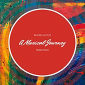 A Musical Journey von Various Artists
