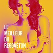 Le Meilleur Du Reggaeton de Various Artists