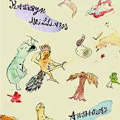 Sorrow Flies von Kathryn Williams