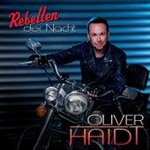 Rebellen der Nacht von Oliver Haidt