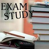 Exam Study di Various Artists